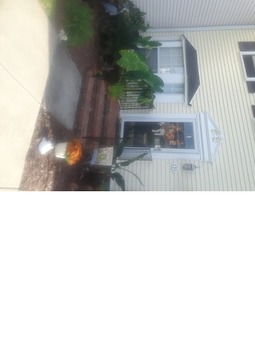 Townhouse/condo for rent